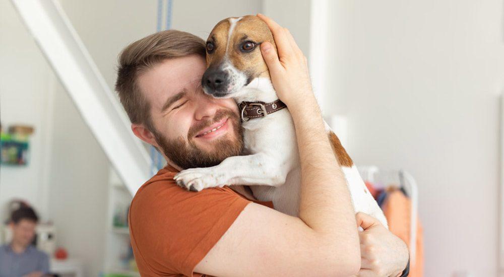 Was passiert mit dem Hund nach der Scheidung?